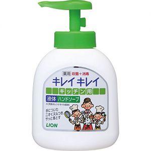 日本LION狮王 天然不刺激厨房去腥洗手液 250ml