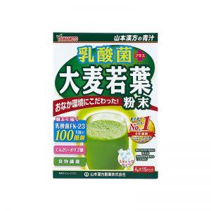 日本山本汉方制药乳酸菌大麦若叶青汁粉末